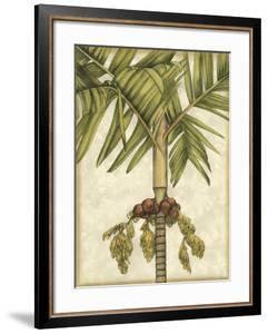 Graphic Palms II by Jennifer Goldberger