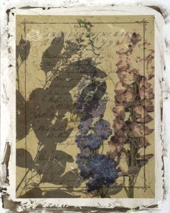 Handwritten Wildflowers I by Jennifer Goldberger