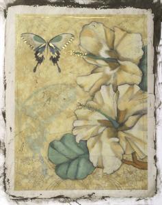 Hibiscus Medley I by Jennifer Goldberger