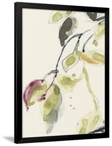 Leaf Branch Triptych I by Jennifer Goldberger