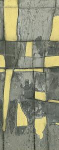 Lemon on Grey II by Jennifer Goldberger