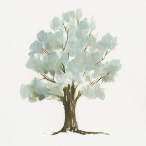 Mint Tree II by Jennifer Goldberger