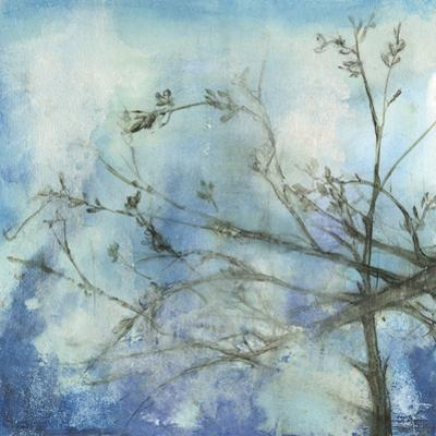 Moonlit Branches II by Jennifer Goldberger