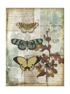 Music Box Butterflies I by Jennifer Goldberger