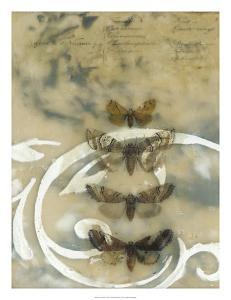 Nocturnes I by Jennifer Goldberger
