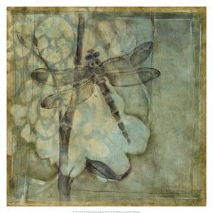 Non-Embellished Ethereal Wings III by Jennifer Goldberger
