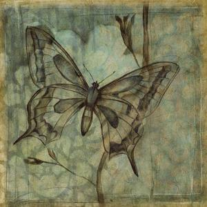 Non-Embellished Ethereal Wings IV by Jennifer Goldberger