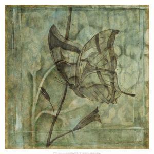 Non-Embellished Ethereal Wings V by Jennifer Goldberger