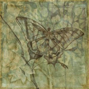 Non-Embellished Ethereal Wings VI by Jennifer Goldberger