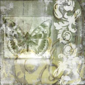 Non-Embld. Butterfly & Ironwork I by Jennifer Goldberger