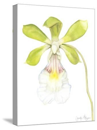 Orchid Beauty I