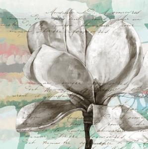 Pastel Magnolias I by Jennifer Goldberger