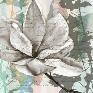 Pastel Magnolias II by Jennifer Goldberger