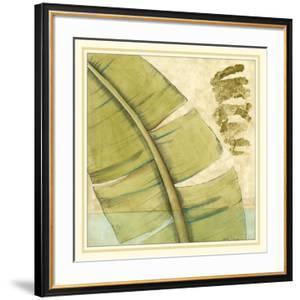 Peacock Palm III by Jennifer Goldberger