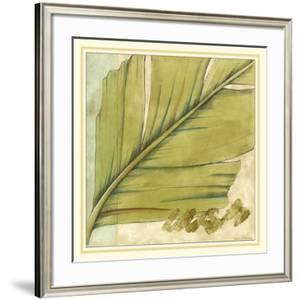 Peacock Palm IV by Jennifer Goldberger