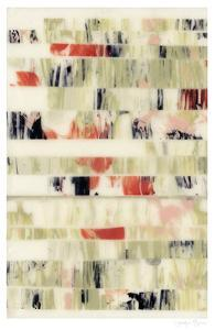 Poppy Obscura I by Jennifer Goldberger