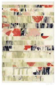 Poppy Obscura II by Jennifer Goldberger