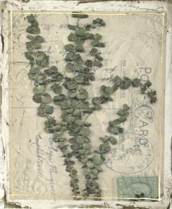 Postcard Wildflowers IV by Jennifer Goldberger