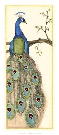 Rebecca's Peacock I