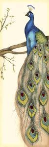 Rebecca's Peacock II by Jennifer Goldberger