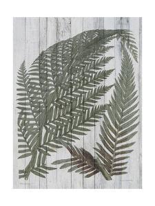Rustic Greenery I by Jennifer Goldberger