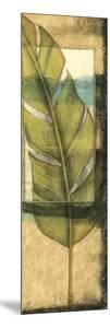 Seaside Palms V by Jennifer Goldberger