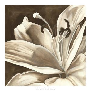 Sepia Lily I by Jennifer Goldberger