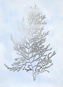 Silver Foil Algae IV on Blue by Jennifer Goldberger