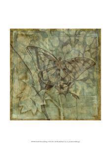 Small Ethereal Wings VI by Jennifer Goldberger
