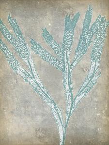 Spa Seaweed II by Jennifer Goldberger