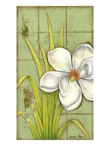 Sugar Magnolia I by Jennifer Goldberger