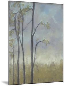 Tree-Lined Wheat Grass II by Jennifer Goldberger