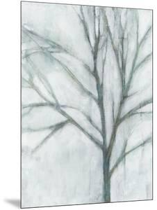 Tree with White Sky I by Jennifer Goldberger