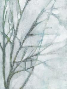 Tree with White Sky II by Jennifer Goldberger
