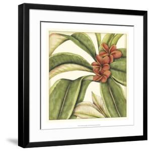 Tropical Blooms and Foliage I by Jennifer Goldberger