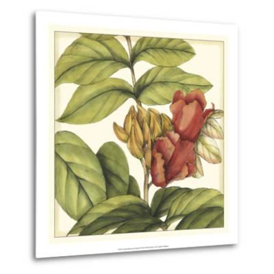 Tropical Blooms and Foliage III