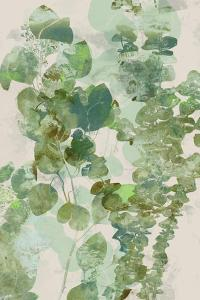Watercolor Eucalyptus II by Jennifer Goldberger
