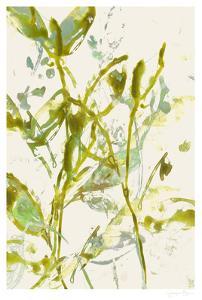 Watercolor Leaves II by Jennifer Goldberger