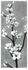 White Blossoms I by Jennifer Goldberger