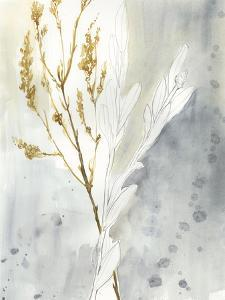 Wild Grass II by Jennifer Goldberger