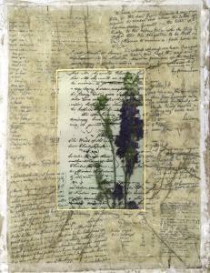 Wildflower Prose I by Jennifer Goldberger