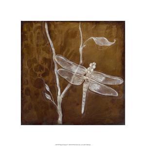 Wings & Damask V by Jennifer Goldberger