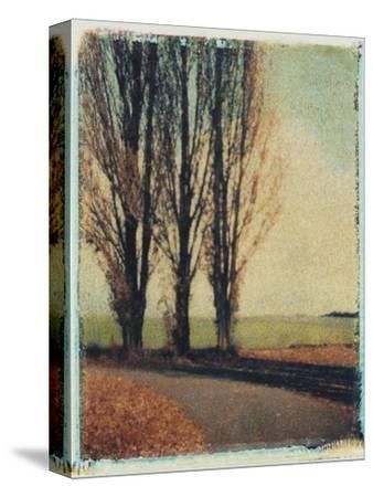 3 Poplars Late Fall