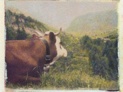 Alpine Cow by Jennifer Kennard