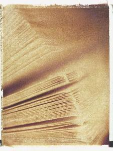 Book Pages by Jennifer Kennard