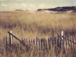Cape Cod Sandunes by Jennifer Kennard