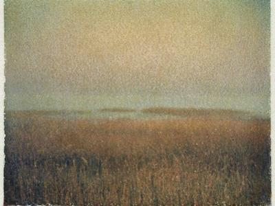 Eastham Marsh by Jennifer Kennard