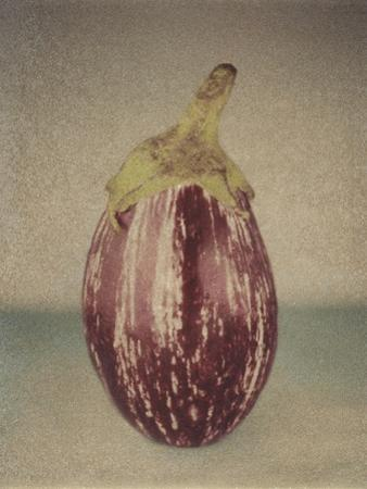 Italian Eggplant by Jennifer Kennard