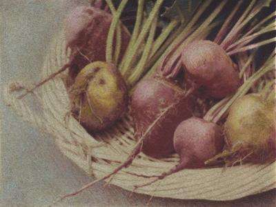Kay's Beets by Jennifer Kennard