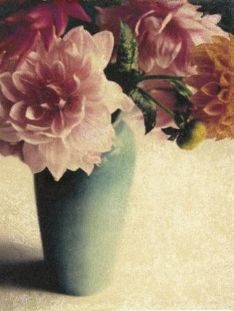 Patrick's Dahlias by Jennifer Kennard